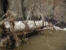 Sheep Creek_12