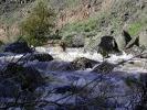 Sheep Creek_8